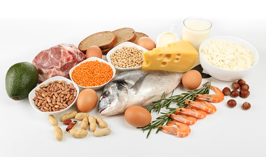 foods-high-in-protein-640x379