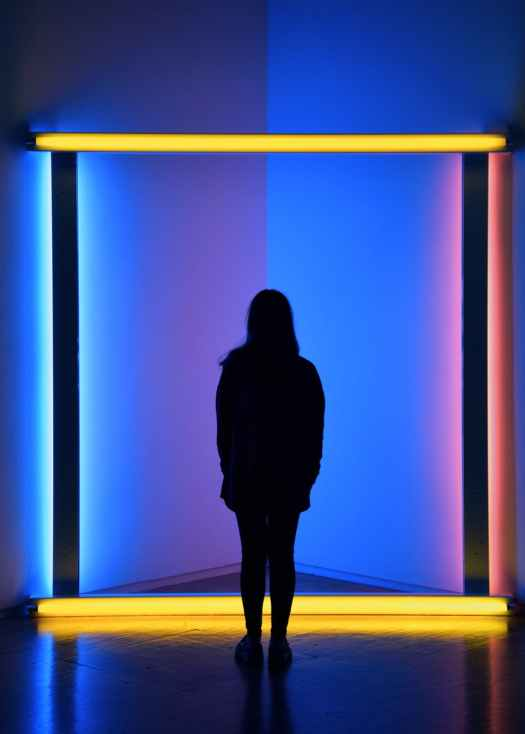 artsy back view silhouette photo of woman standing in front of neon lit room
